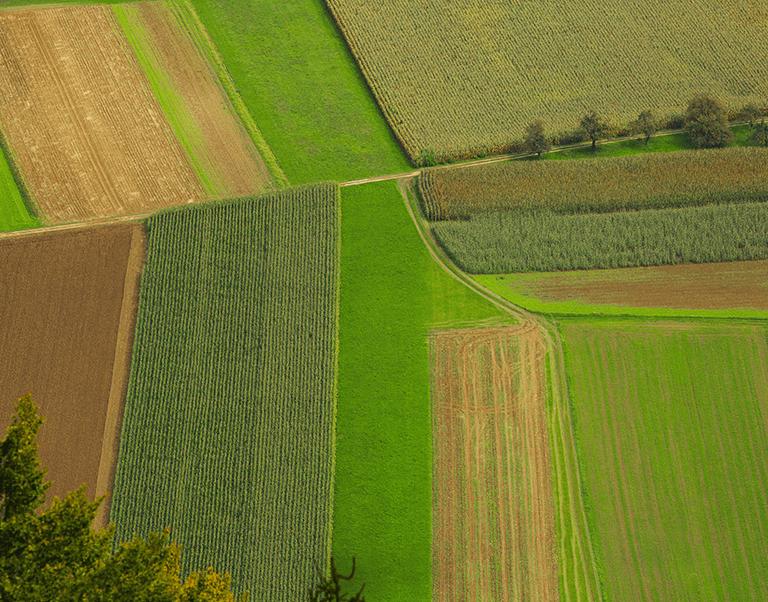 Земеделски административен софтуер TechnoFarm
