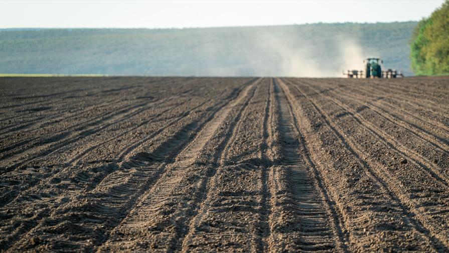 Precision Planting - решение за прецизни земеделци!